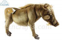 Soft Toy Warthog by Hansa (65cm) 5177