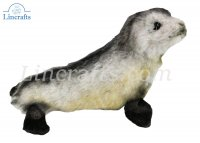 Soft Toy African Seal Pup by Hansa (26 cm.L) 6700
