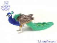 Soft Toy Bird, Peacock by Hansa (24cm)