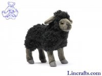Soft Toy Black Sheep, Lamb by Hansa (17cm) 5975