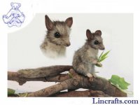 Soft Toy Leadbetter Possum by Hansa (11cm)