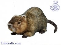 Soft Toy Water Rat (Ragondin) by Hansa (55cm.L) 7166