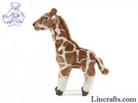 Soft Toy Giraffe by Living Nature (32cm) AN331