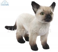 Soft Toy Siamese Kitten by Hansa (33cm) 7595