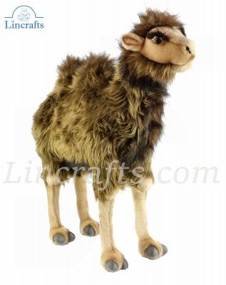 Soft Toy Bactrian Camel by Hansa  (55cm) 4656