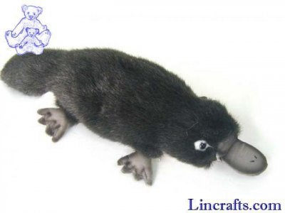 Soft Toy Platypus by Hansa (30cm) 3665