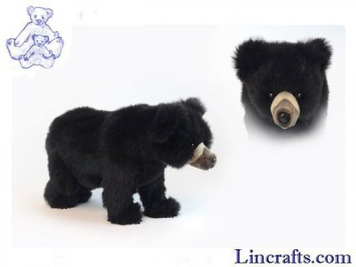 Soft Toy Andean Bear by Hansa (40cm) 5642