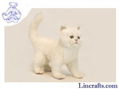 Soft Toy Cat, White Kitten by Hansa (29cm) 6434