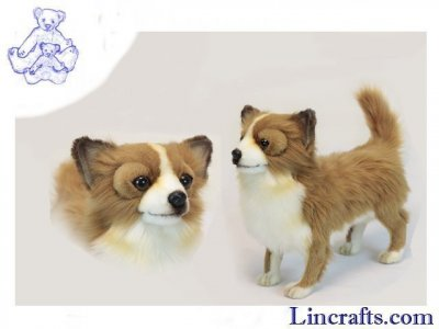 Soft Toy  Dog, Chihuahua Brown and White by Hansa (32cm) 6503