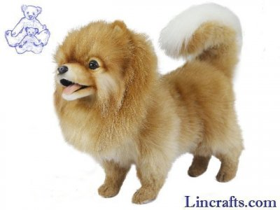 Soft Toy Dog, Pomeranian by Hansa (28cm) 7018