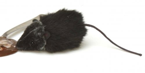 Soft Toy BlackRat (Ratsky) by Hansa (9cm)