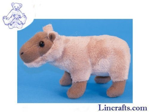 Soft Toy Mini Capybara by Dowman Soft Touch (18cm)
